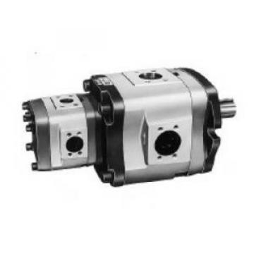 IPH-2A-5-L-11 Pompa Roda Gigi