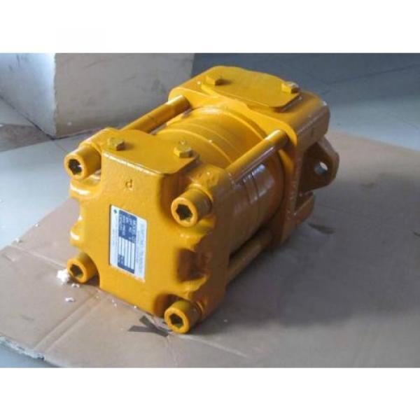 IPH-46B-20-125-11 Pompa Roda Gigi #3 image